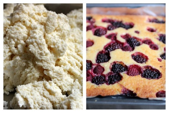 Collage of ricotta cheese and top of berry cake