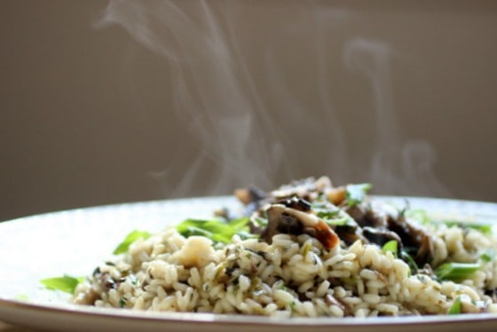 Oval white serving plate with steamy Mushroom Risotto