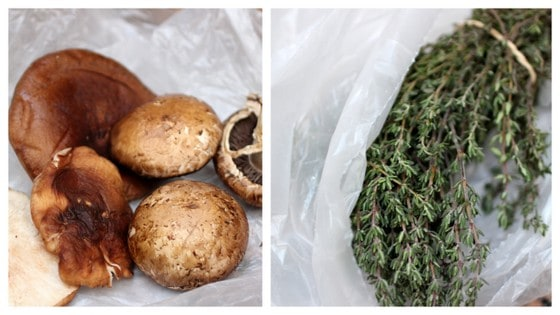 Wild Mushrooms and fresh thyme image collage