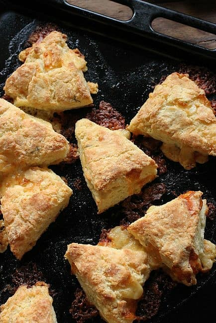 Double Cheese Dill Scones