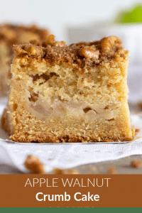 Close up of apple coffee cake square