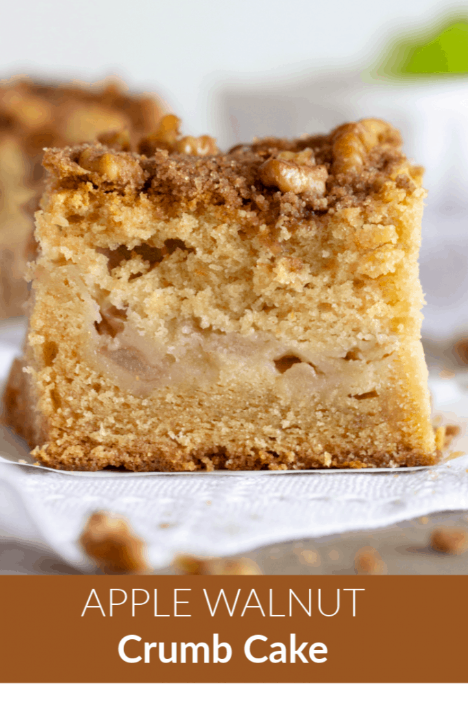 Close up of apple coffee cake square
