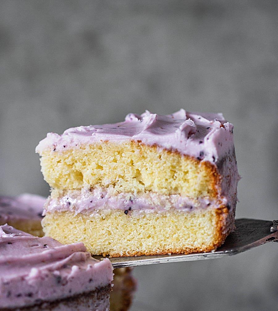 Close-up slice of lemon blueberry cake on cake server