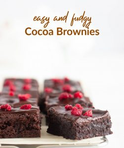 Squares of cocoa brownies, raspberry pieces, white surface, text