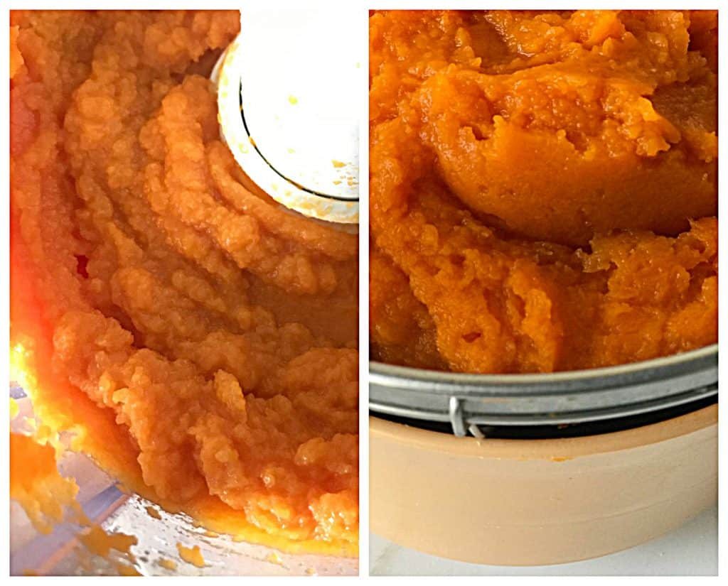 Pumpkin or squash puree Collage