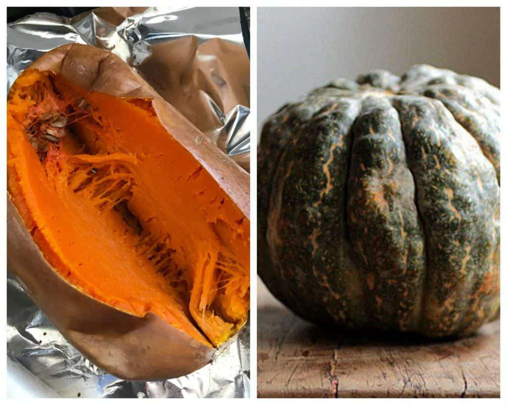 Squash and pumpkin Collage