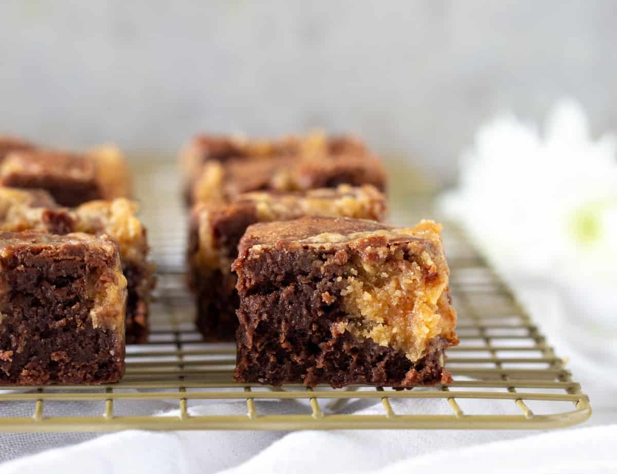Squares of peanut butter swirl brownies on wire rack, white background