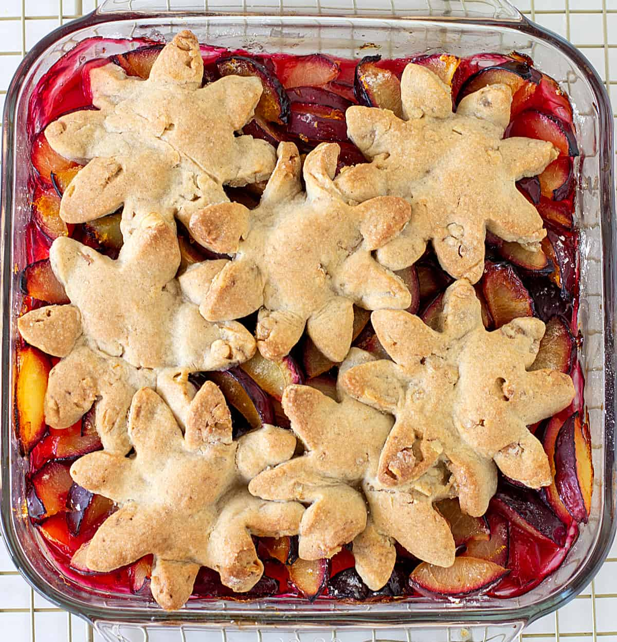 Baked plum cobbler with flour dough cut-outs on square glass dish