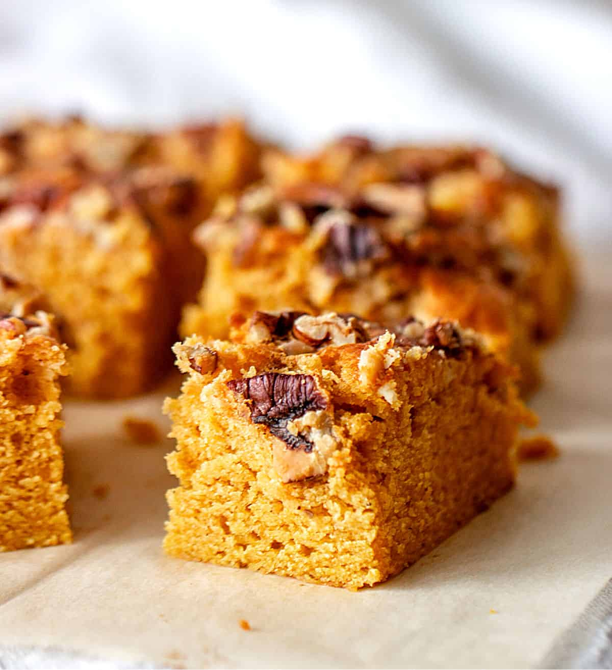 Rows of pumpkin cake squares topped with pecans, parchment paper surface, grey background