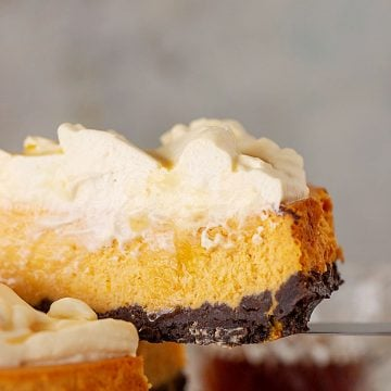 A slice of pumpkin cheesecake topped with cream, grey background
