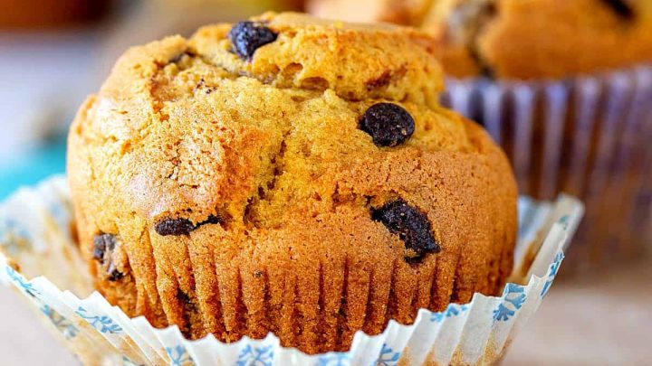 Single pumpkin muffin with chocolate chips in white paper liner on a wooden board