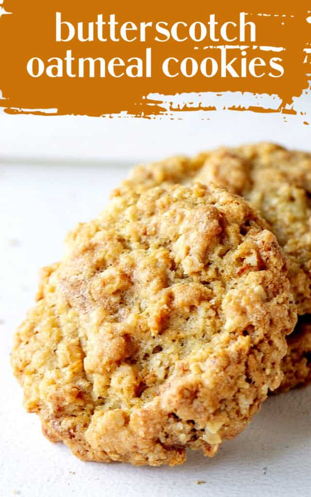 Close up of whole oatmeal cookie on a white surface; light brown and white text overlay