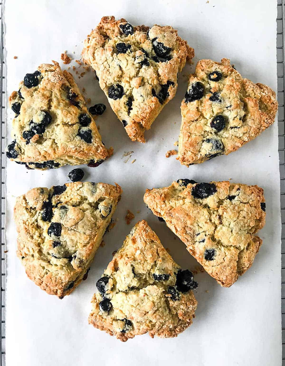 Top view of baked blueberry scones in a circle on white parchment paper