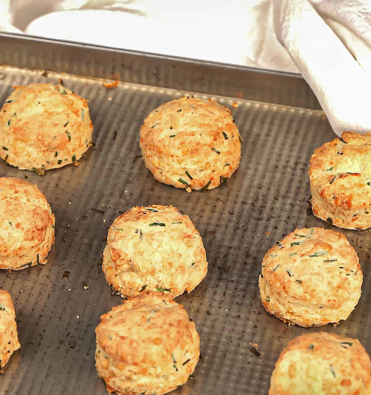 Baking sheet with baked golden scones