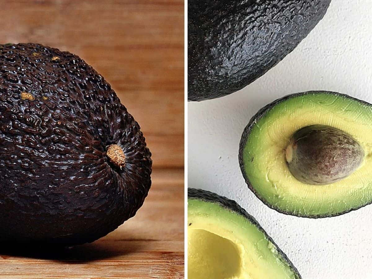 Collage showing half whole avocado and opened on white surface
