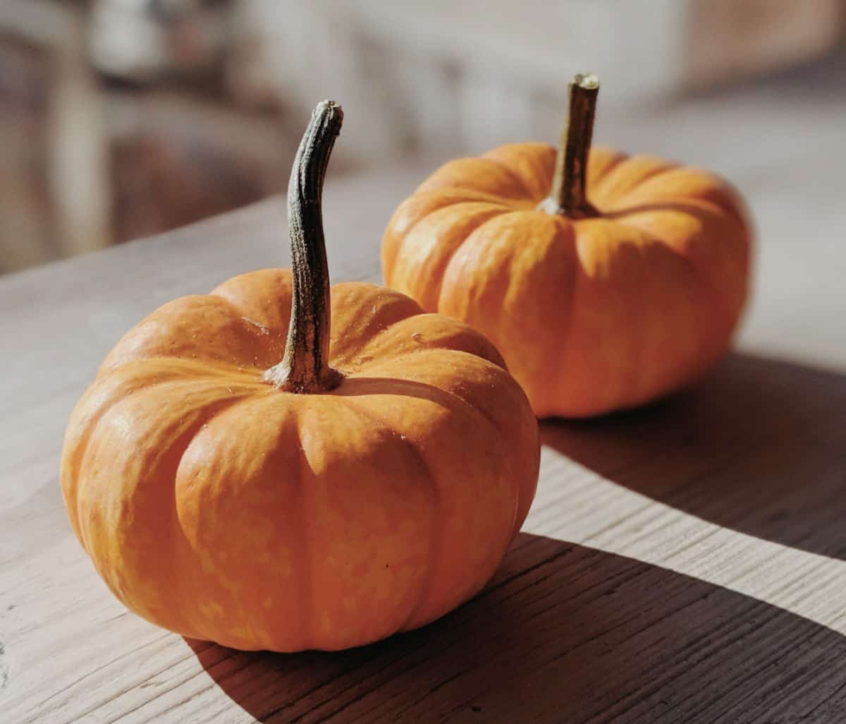 Two whole orange pumpkins on greyish wooden table
