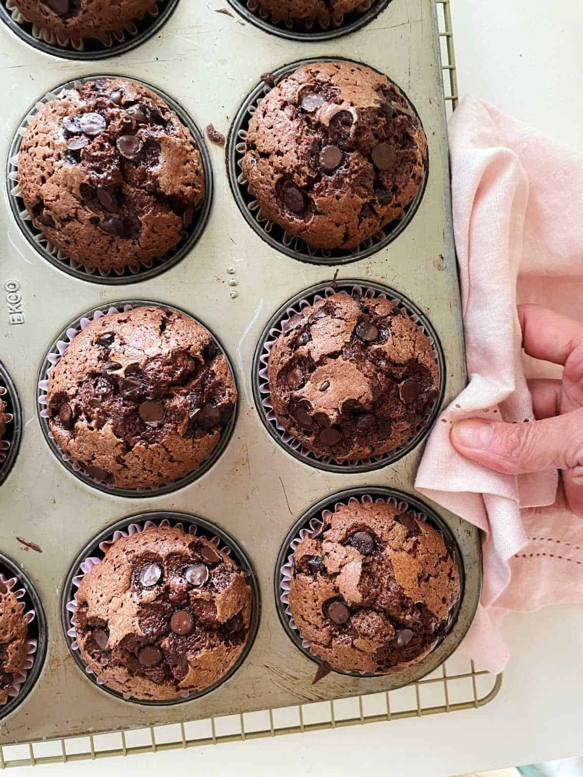 Baked chocolate muffins in metal pan, hand holding pink napkin